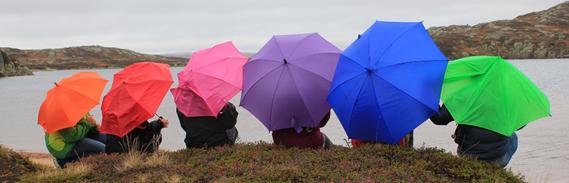 Paraplyer_farge.jpg