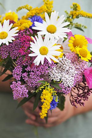 Blomster_72 dpi.jpg